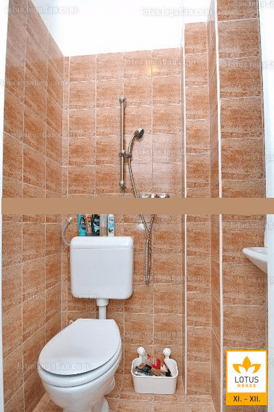 A vécé-zuhanyzó (kép a hirdetésből)