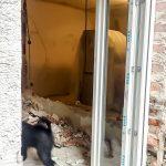 Samu kutya felügyeli a bontást