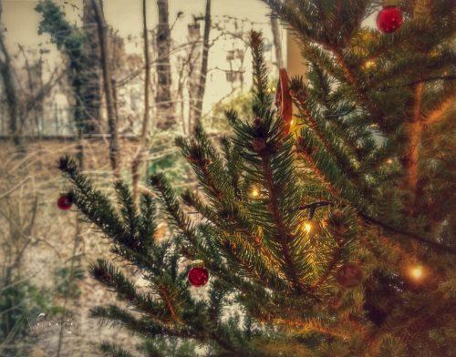 Vacókia karácsonyfája