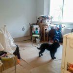 Papírral és az új bútorok kartonjával védtük a parkettát